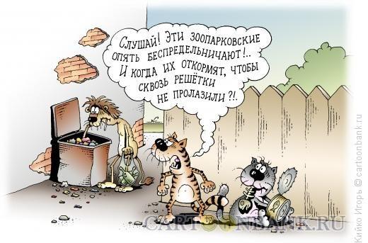 Анекдоты Про Животных Самые Смешные