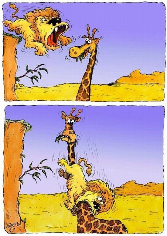 Анекдот Про Жирафа