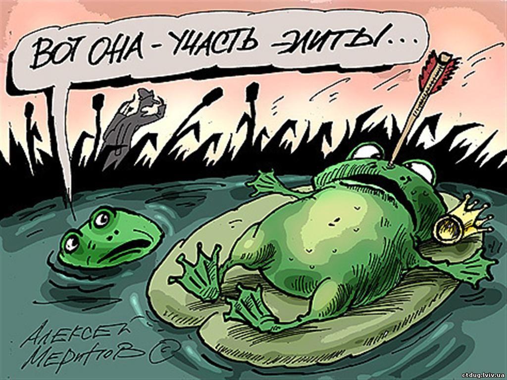 Анекдот Про Лягушку